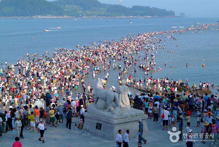Kỳ lạ biển chia đôi ở Hàn Quốc