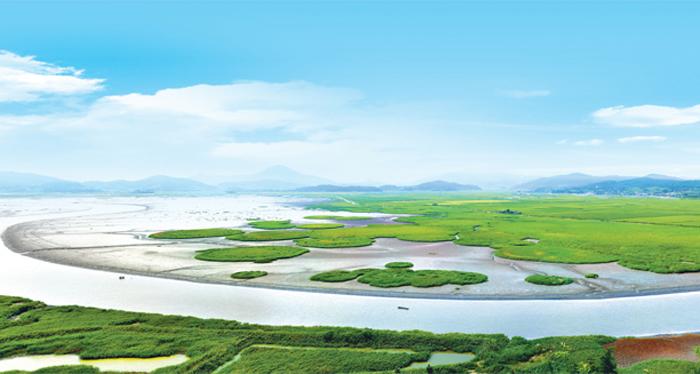 Ghé thăm vịnh Suncheon ở Hàn Quốc