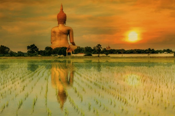 10-trai-nghiem-thu-vi-nen-thu-khi-den-bangkok-ivivu-4
