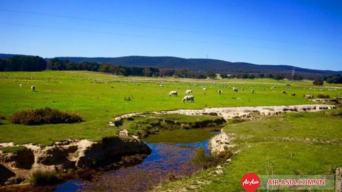 """Suốt dọc hành trình từ Sydney đi Canberra, là màn """"khoe khoang"""" của thiên nhiên nước Úc"""