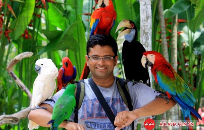 Trải nghiệm công viên chim ở Kuala Lumpur