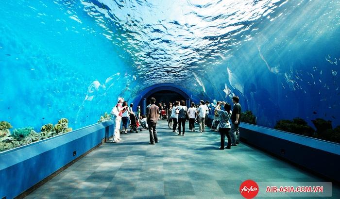Thủy cung Siam Ocean World ở Bangkok