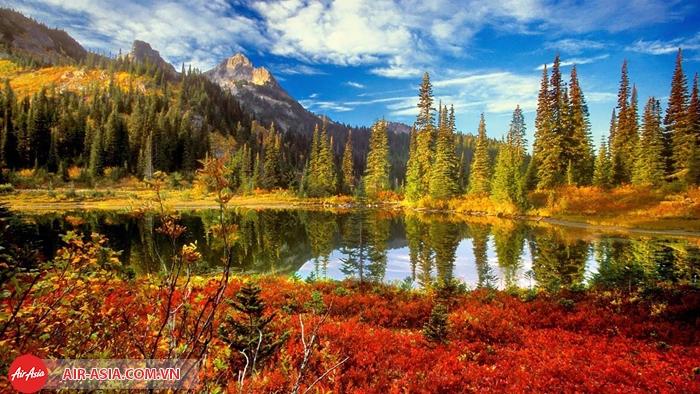 Công viên quốc gia Mount Field