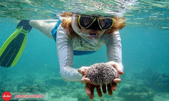 Lặn biển Phuket