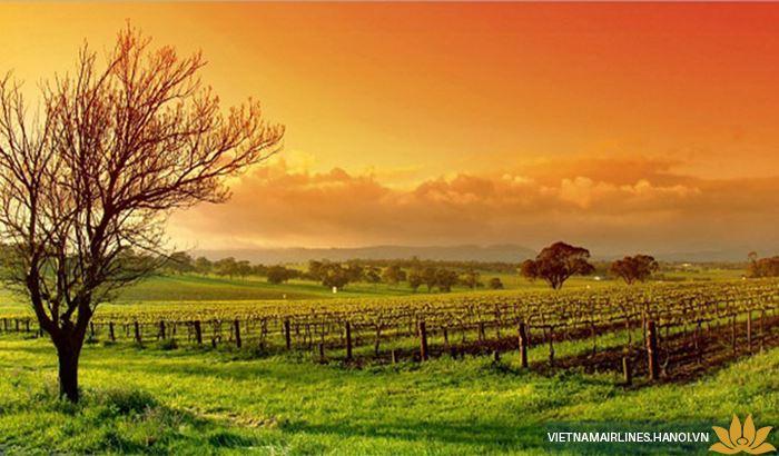 Thung lũng Barosa