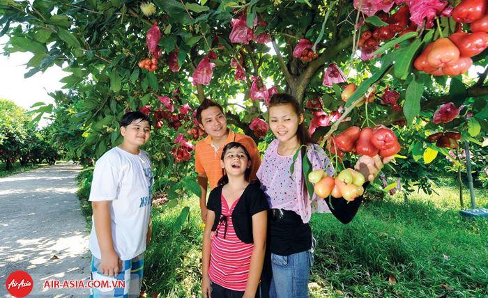 Nông trại trái cây Desaru